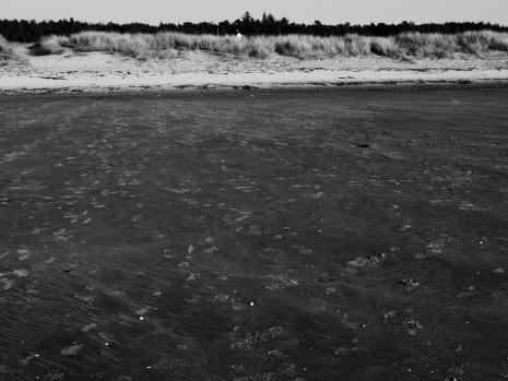 Traces of human presence along the west coast, photo credit: Eduardo Abrantes