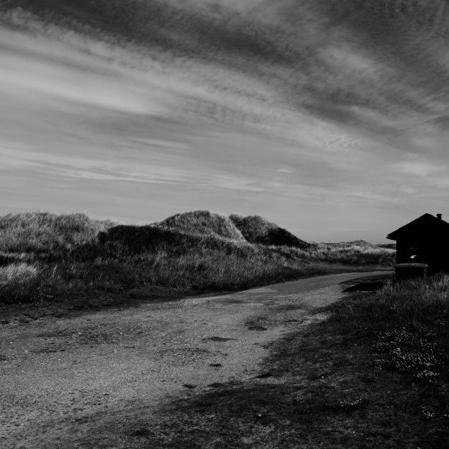 Landscape local textures, photo credit: Eduardo Abrantes