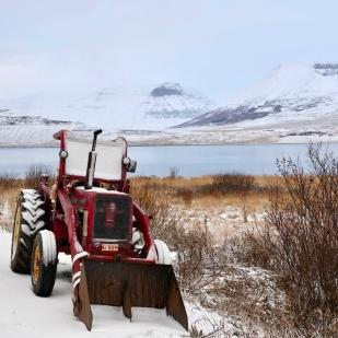 Photo: Eduardo Abrantes, Þingeyri, Iceland 2017